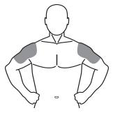Andro shoulders ben 05092014 mdgd